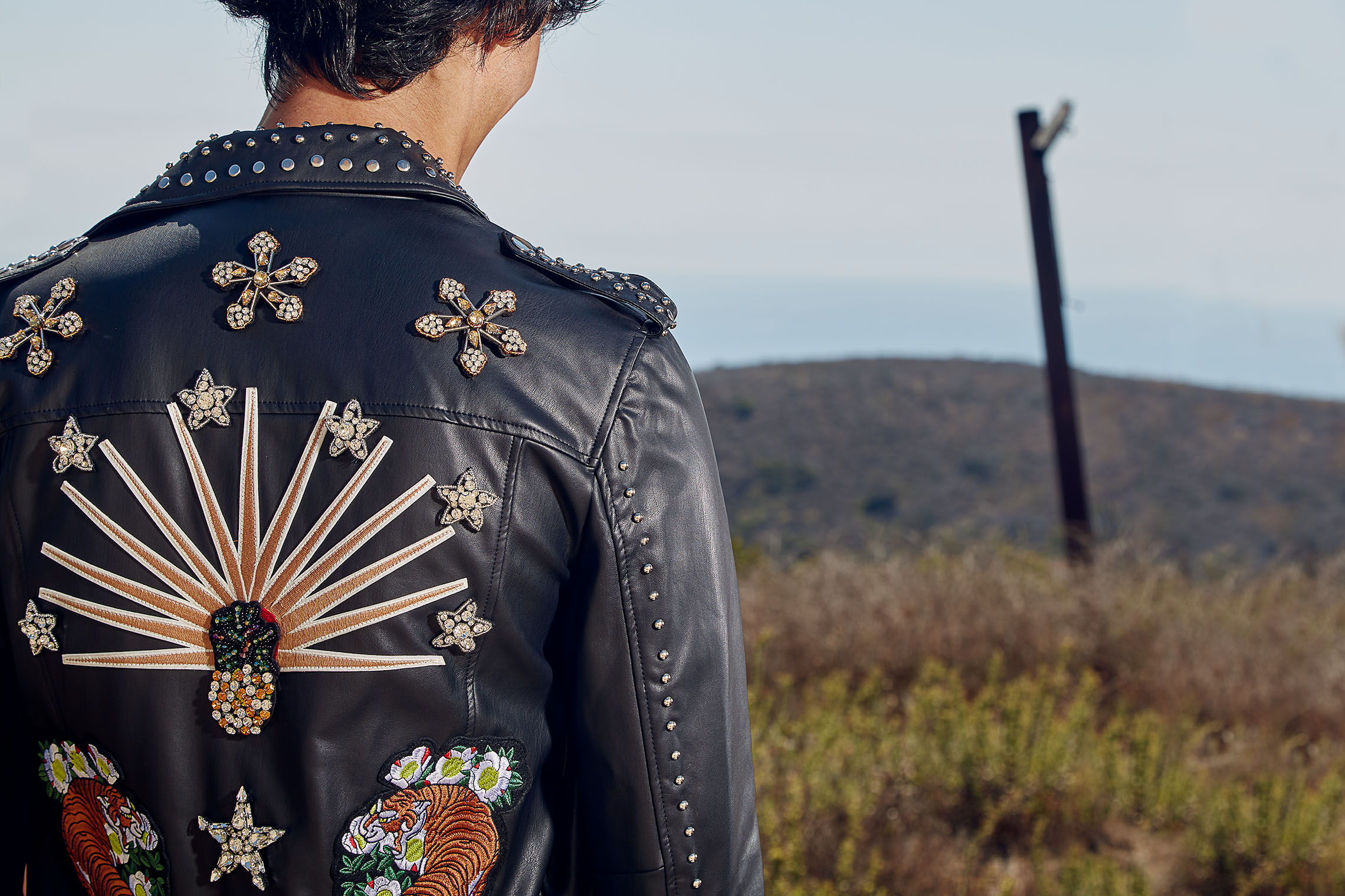 Male leather jacket, photographed from behind, see the stitching and adorning patterns in this stylish jacket, Malibu, LA, California